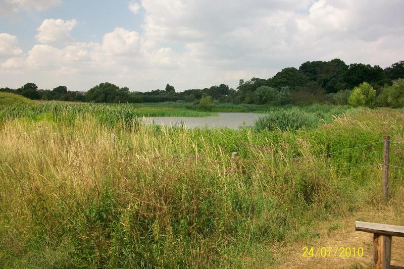 Bobbits Lane Meadow