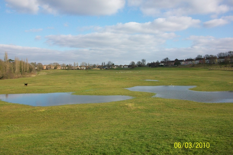 Landseer Park Ipswich Landseer Park