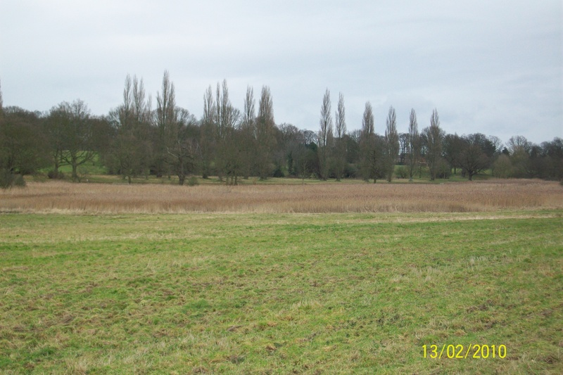 Bourne Park Reedbeds & Ostrich Meadow