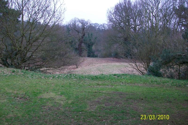 Broom Hill
